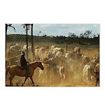 Herding Cattle Postcards (Package of 8)