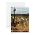 Herding Cattle Greeting Cards (Pk of 20)