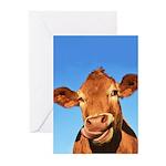 Selfie Cow Greeting Cards (Pk of 20)