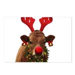 Christmas Cow Postcards (Package of 8)