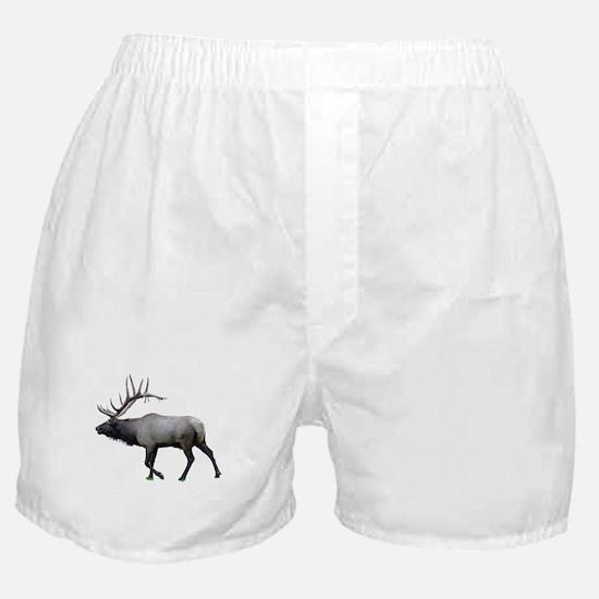 Willow Wapiti elk Boxer Shorts