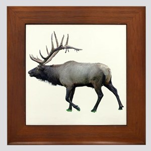 Willow Wapiti elk Framed Tile