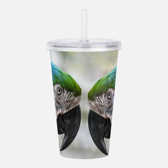 parrot stare down Acrylic Double-wall Tumbler