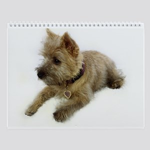 Cairn Terrier Puppy Wall Calendar