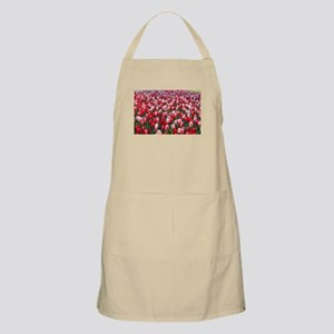 Red and Pink Tulips of Keukenhof Lisse Holla Apron