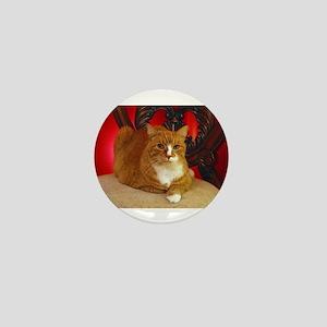 Vanya the cat posing for the camera Mini Button