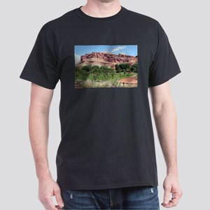 Fruita, Capitol Reef National Park, Utah, T-Shirt