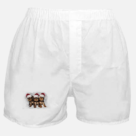 Christmas Yorkshire Terriers Boxer Shorts