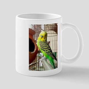 Budgerigars Mugs