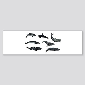OCEANS Bumper Sticker