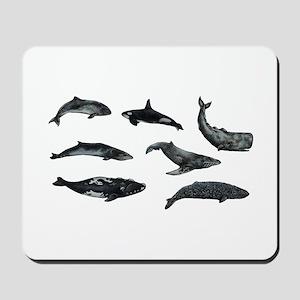 OCEANS Mousepad