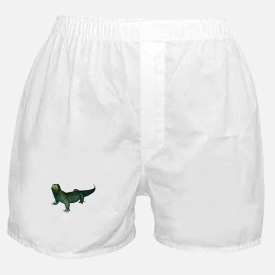 ATTENTION Boxer Shorts