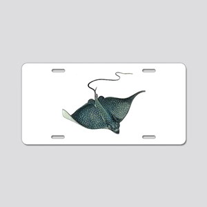 RAY Aluminum License Plate