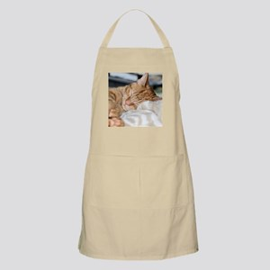 Purrfectly sleeping Apron