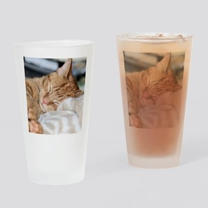 Purrfectly sleeping Drinking Glass
