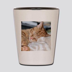 Purrfectly sleeping Shot Glass