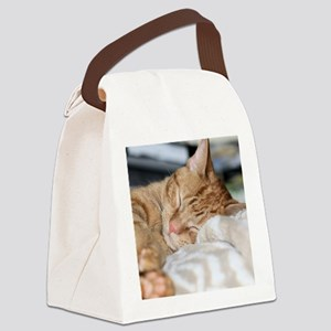 Purrfectly sleeping Canvas Lunch Bag