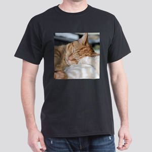 Purrfectly sleeping T-Shirt
