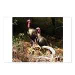 Two Turkeys on a Log Postcards (Package of 8)