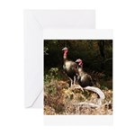 Two Turkeys on a Log Greeting Cards (Pk of 10)