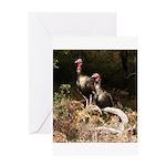 Two Turkeys on a Log Greeting Card