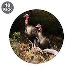 Two Turkeys on a Log 3.5