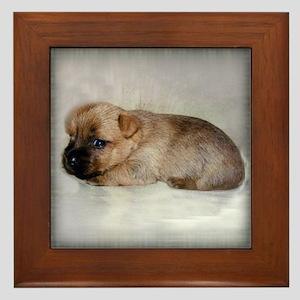 Cairn Terrier Puppy Framed Tile