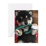 Fuji Candy Cane Single Card Greeting Cards