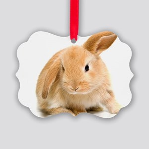 Spring Easter Bunny 2 Ornament