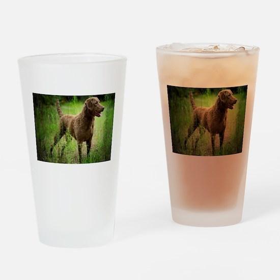 Unique Chesapeake bay Drinking Glass