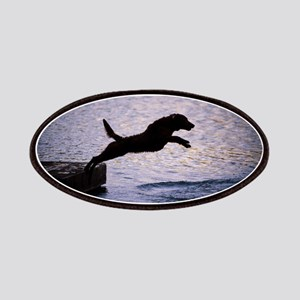 Chesapeake Bay Retriever Leaping In the Wate Patch