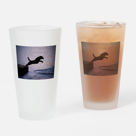 Chesapeake Bay Retriever Leaping In Drinking Glass
