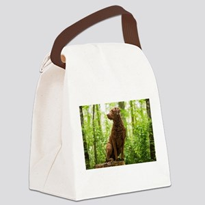 Chesapeake Bay Retriever Canvas Lunch Bag
