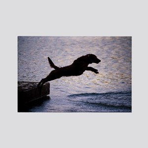 Chesapeake Bay Retriever Leaping Rectangle Magnet