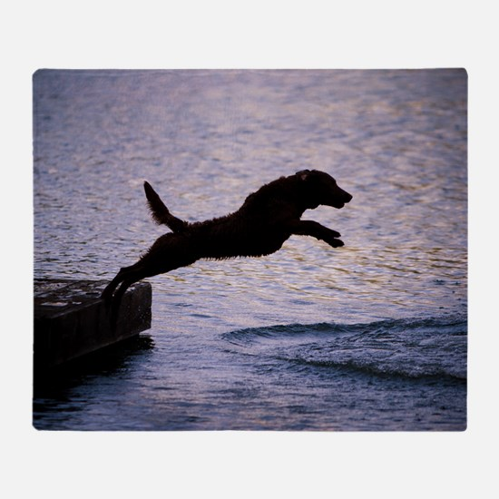 Chesapeake Bay Retriever Leaping In Throw Blanket