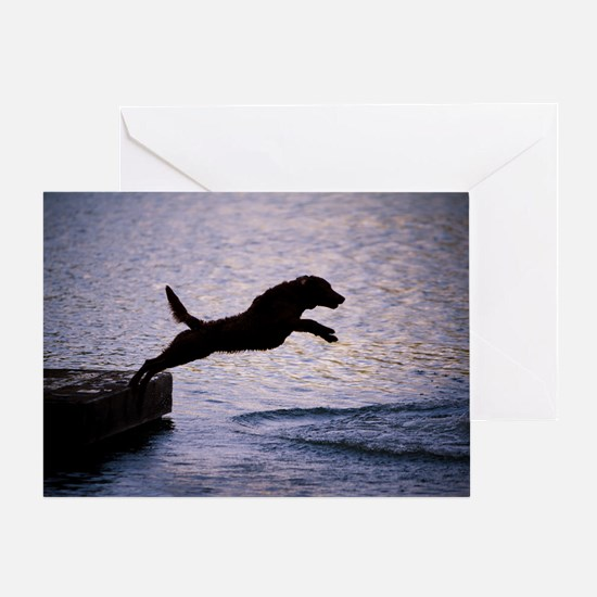 Chesapeake Bay Retriever Leaping In Greeting Card