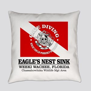 Eagles Nest Sink Everyday Pillow