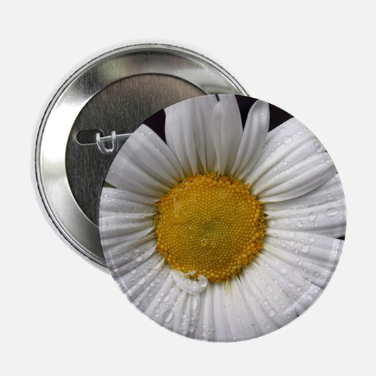 "Dewy Daisy 2.25"" Button (10 pack)"