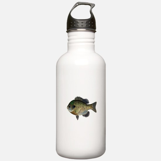 BLUEGILL Water Bottle