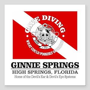 "Ginnie Springs Square Car Magnet 3"" x 3"""