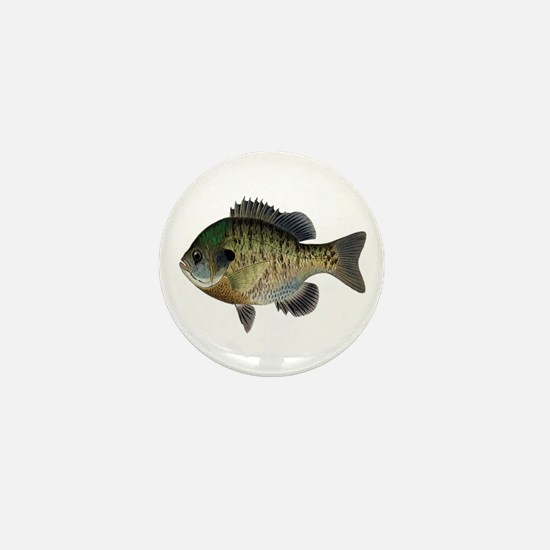 BLUEGILL Mini Button