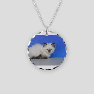Anna - Seal Point Ragdoll Kitten Necklace