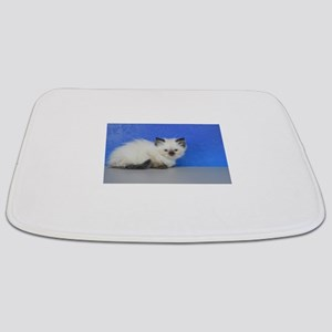 Anna - Seal Point Ragdoll Kitten Bathmat