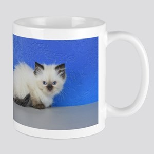 Anna - Seal Point Ragdoll Kitten Mugs