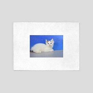 Brett - Seal Van Bicolor Mink Ragdoll Kitten 5'x7'