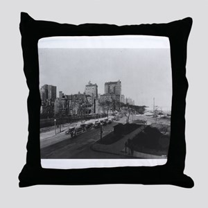 Lake Shore Drive/Drake Throw Pillow