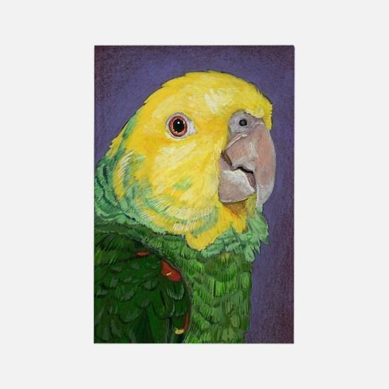 Cute Amazon parrot bird Rectangle Magnet