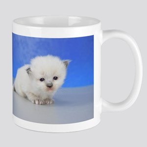 Corey - Seal Mitted Ragamuffin Kitten Mugs