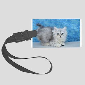 Ella - Silver Tabby Ragamuffin Kitten Luggage Tag