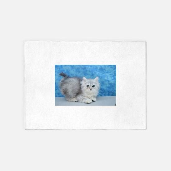 Ella - Silver Tabby Ragamuffin Kitten 5'x7'Area Ru